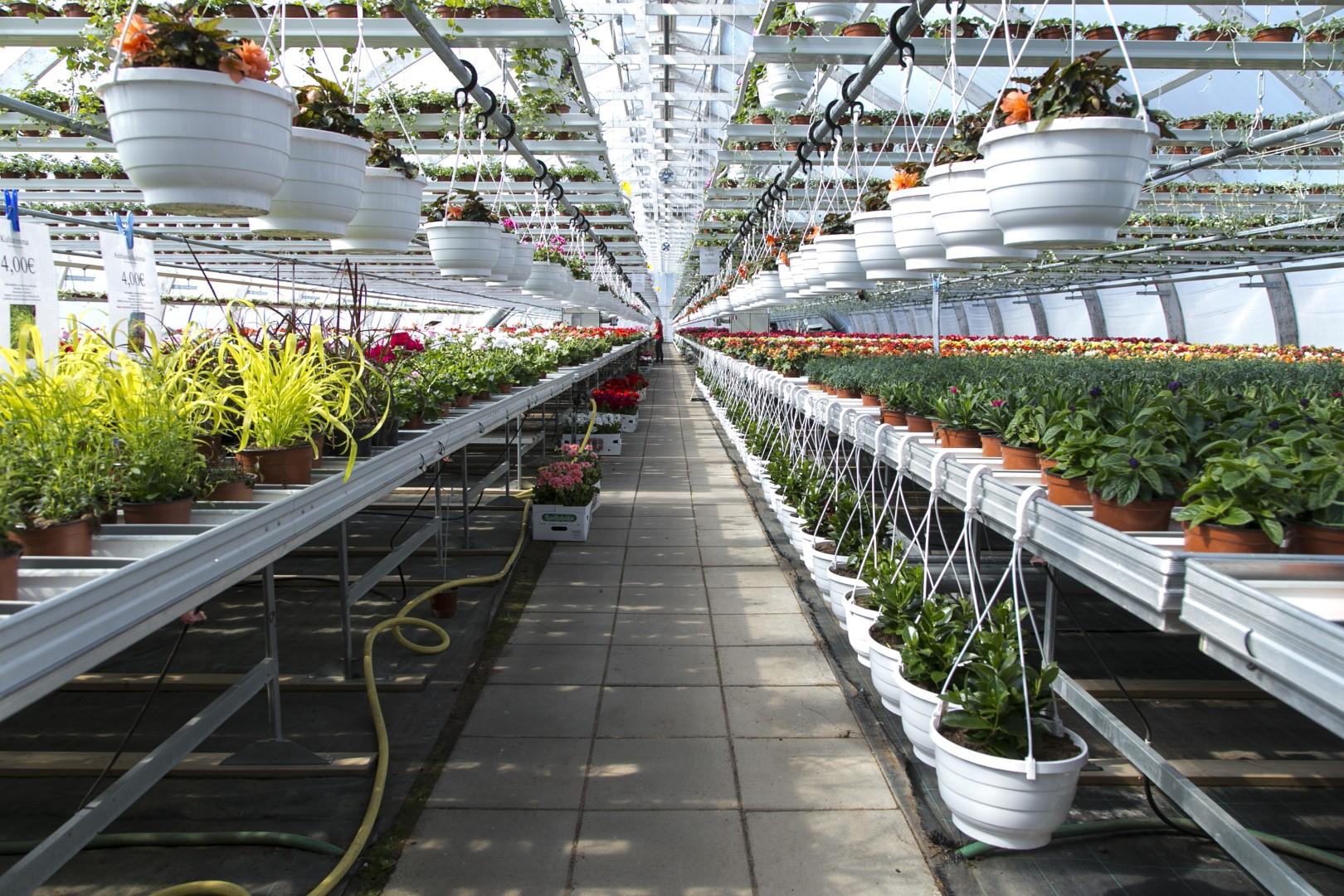 Voit istuttaa näppärästi kasvit meillä omiin astioihin tai ruukkuihisi.